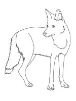 Coyote-coloring-pages-4