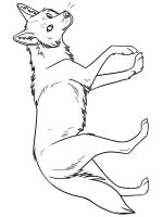 Coyote-coloring-pages-7