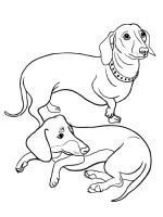 Dachshund-coloring-pages-1