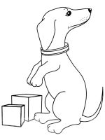 Dachshund-coloring-pages-2