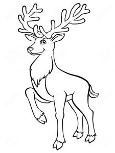 Deer-animal-coloring-pages-342