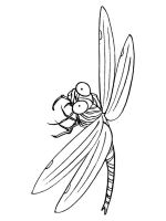 Dragonfly-coloring-pages-8