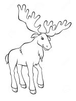 Elk-coloring-pages-14
