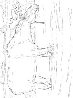 Elk-coloring-pages-6
