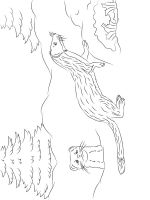 Ferret-coloring-pages-7