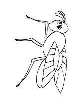 Fly-coloring-pages-1