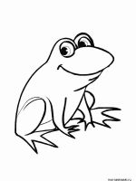 Frog-coloring-pages-1