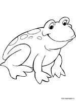Frog-coloring-pages-15