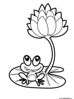 Frog-coloring-pages-2