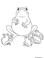 Frog-coloring-pages-4
