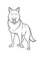 German-Shepherd-coloring-pages-1
