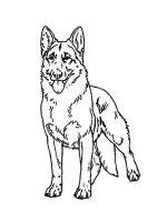German-Shepherd-coloring-pages-2
