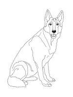 German-Shepherd-coloring-pages-3
