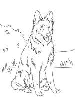 German-Shepherd-coloring-pages-8