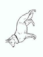 German-Shepherd-coloring-pages-9