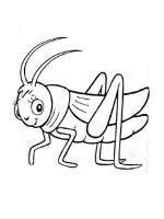 Grasshopper-coloring-pages-10
