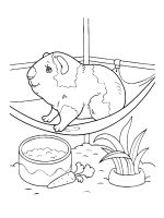 Guinea-Pig-coloring-pages-11