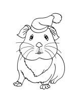 Guinea-Pig-coloring-pages-14