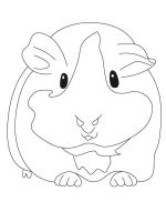 Guinea-Pig-coloring-pages-2