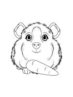 Guinea-Pig-coloring-pages-23