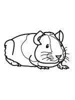 Guinea-Pig-coloring-pages-4