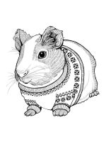 Guinea-Pig-coloring-pages-5