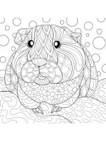 Guinea-Pig-coloring-pages-6
