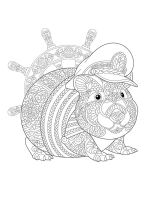 Guinea-Pig-coloring-pages-7