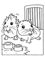 Hamster-animal-coloring-pages-339