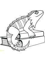 Iguana-coloring-pages-5