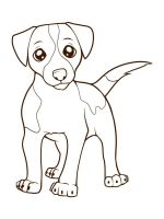 Jack-Russell-Terrier-coloring-pages-2