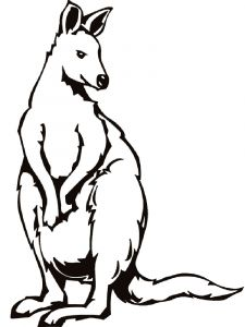 Kangaroo-animal-coloring-pages-346