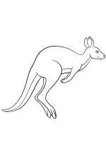 Kangaroo-coloring-pages-3