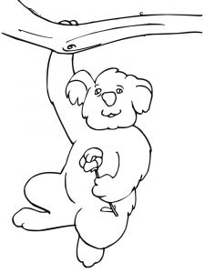 Koala-animal-coloring-pages-339
