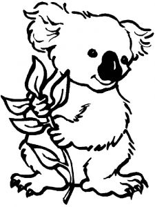 Koala-animal-coloring-pages-340