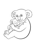 Koala-coloring-pages-9