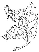 Ladybug-coloring-pages-14