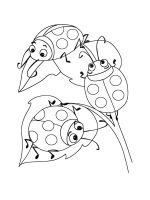 Ladybug-coloring-pages-26