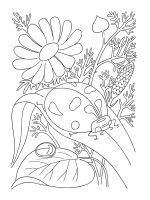 Ladybug-coloring-pages-37