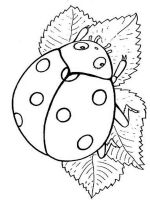 Ladybug-coloring-pages-4