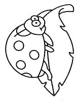 Ladybug-coloring-pages-6