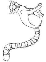 Lemur-coloring-pages-13