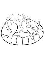 Lemur-coloring-pages-14
