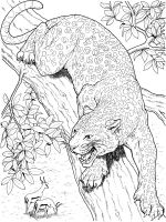 Leopard-animal-coloring-pages-337