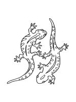Lizard-coloring-pages-13