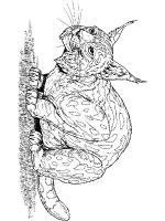 Lynx-animal-coloring-pages-350