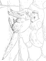 Mongoose-coloring-pages-10