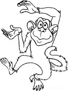 Monkey-animal-coloring-pages-336