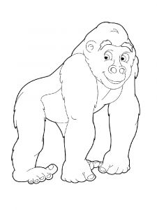 Monkey-animal-coloring-pages-345