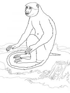 Monkey-animal-coloring-pages-355